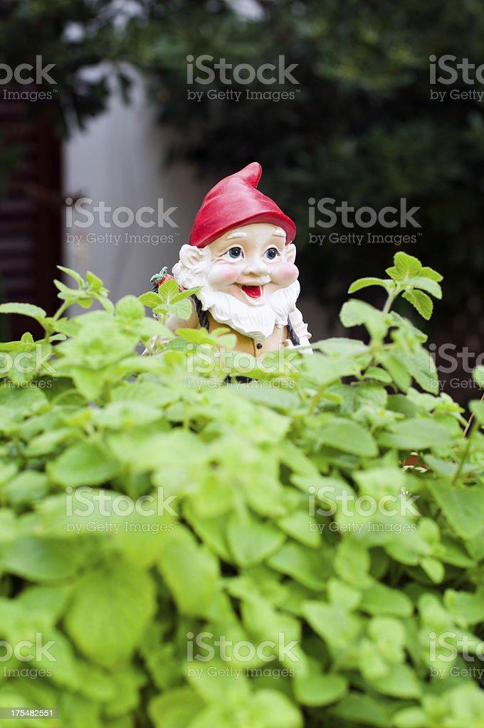 Gnome in the garden stock photo