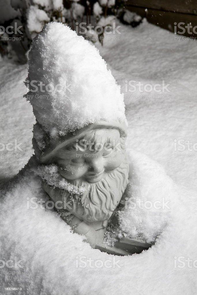 Gnome in Winter Garden stock photo