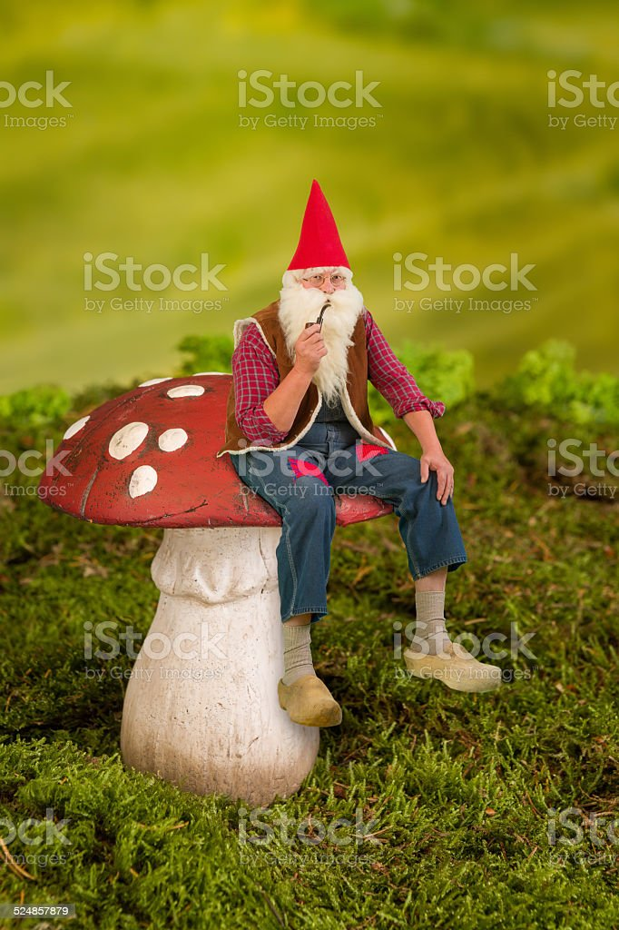 Gnome on toadstool stock photo