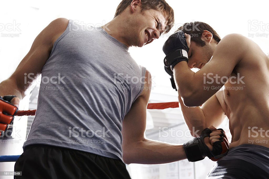 Go big or get out the ring! royalty-free stock photo