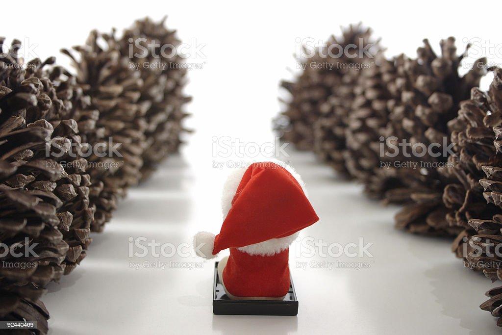 Go Santa! royalty-free stock photo