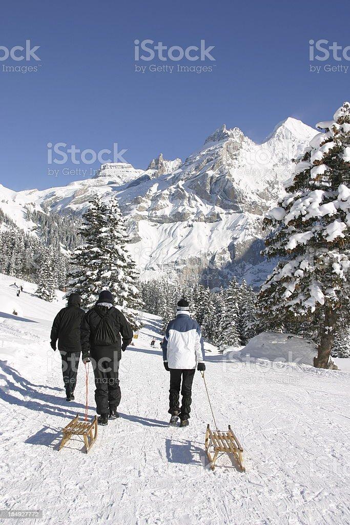 go sledding royalty-free stock photo