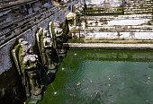 Goa Gajah pool