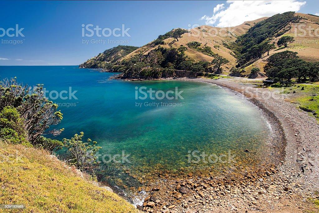 Goat bay, Coromandel peninsular, New Zealand stock photo