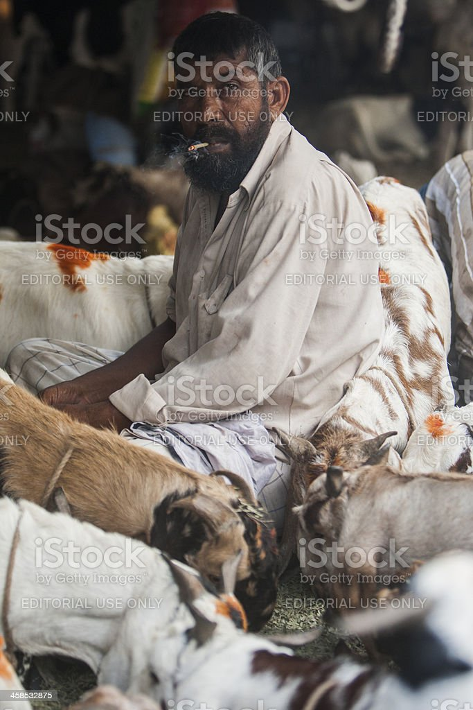 Goat herder smokes stock photo