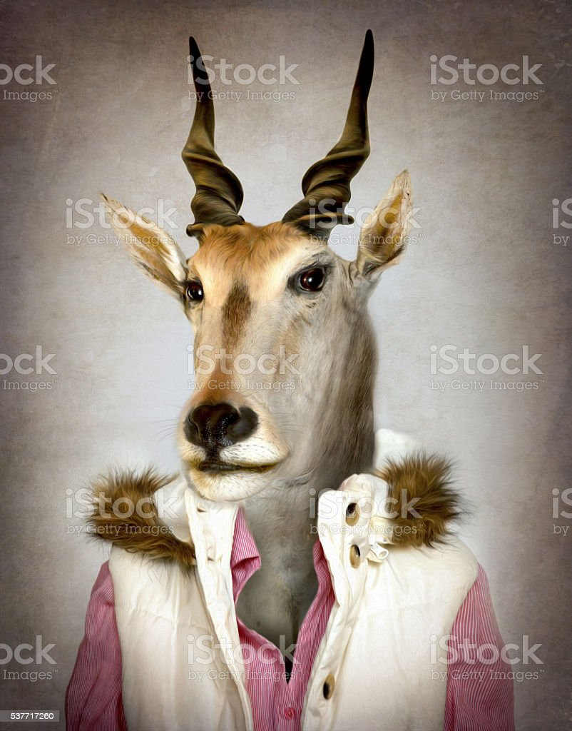 Goat in clothes. Digital illustration in soft oil painting style stock photo