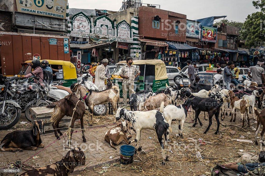 Goat market in Old Delhi India stock photo