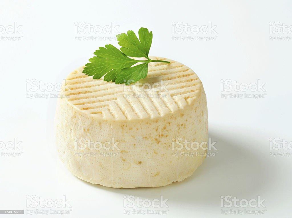 goat milk cheese royalty-free stock photo