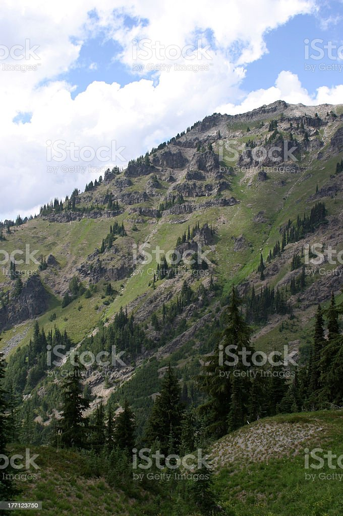 Goat Rocks royalty-free stock photo