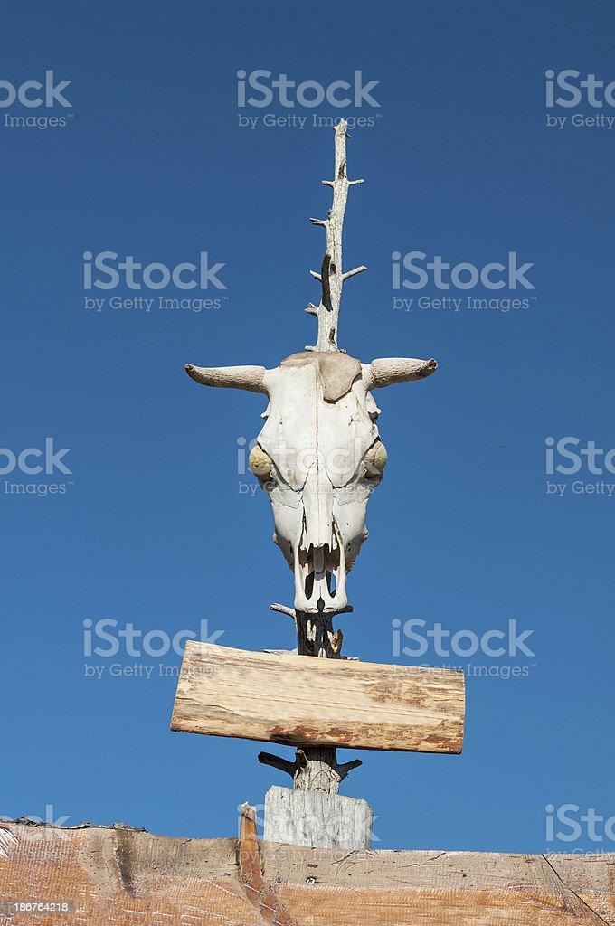 Goat Skull royalty-free stock photo