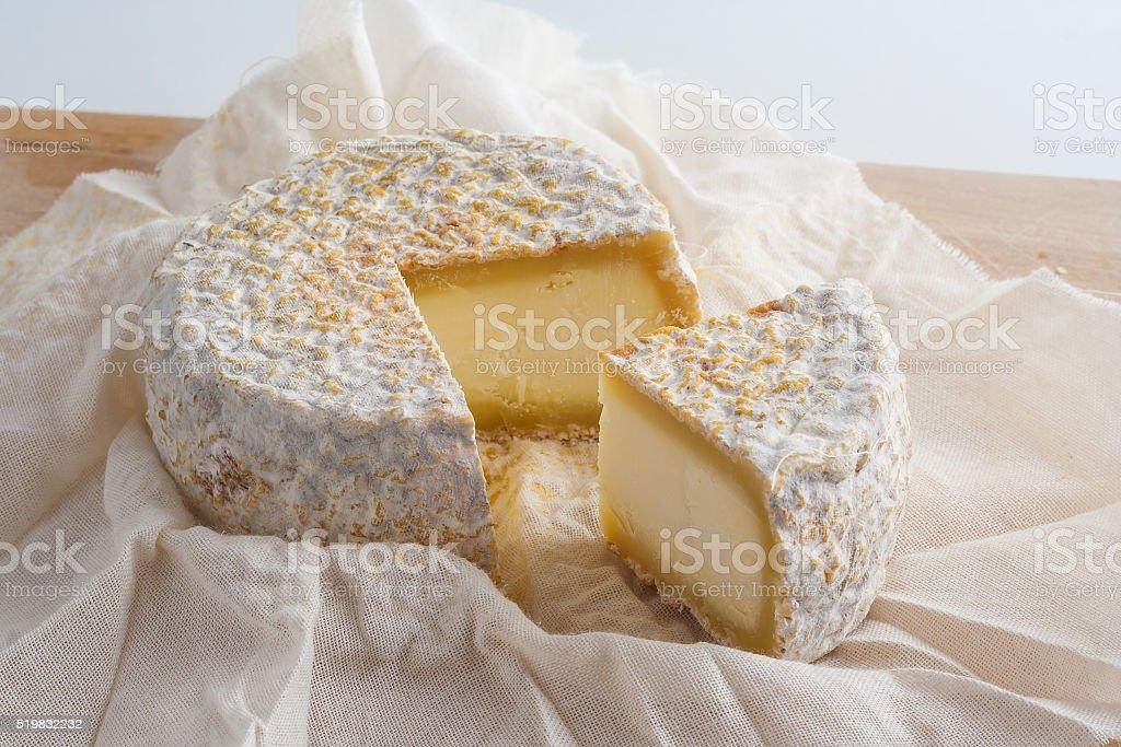 Goat's cheese stock photo