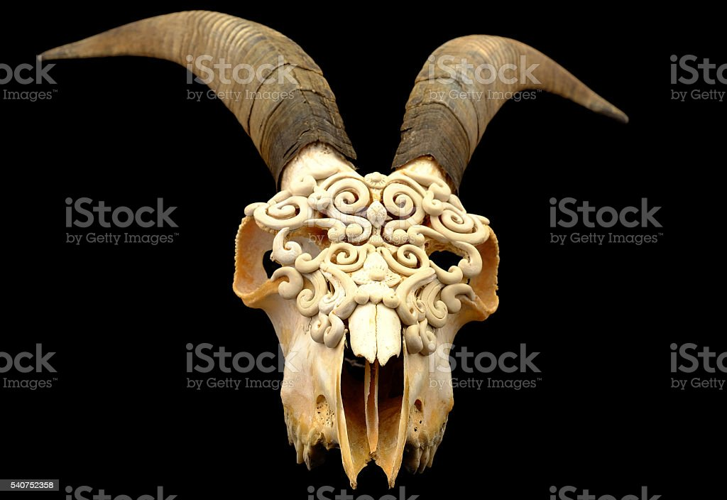 Goat's skull decorated with  Polymer clay  (Selective focus) stock photo