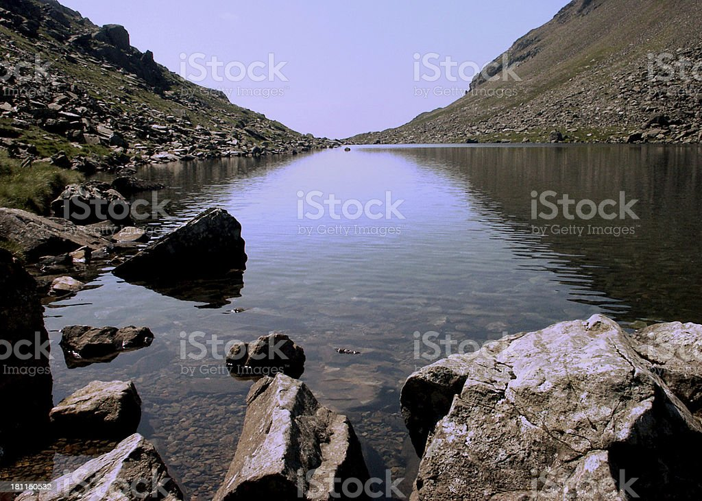 Goats Water royalty-free stock photo