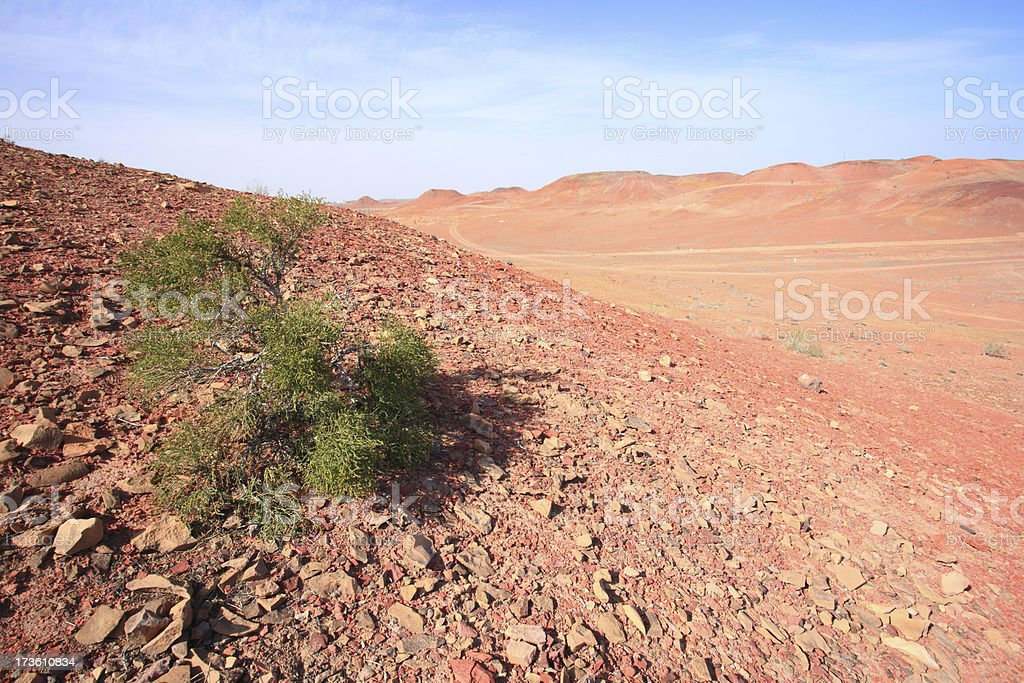 Gobi desert royalty-free stock photo