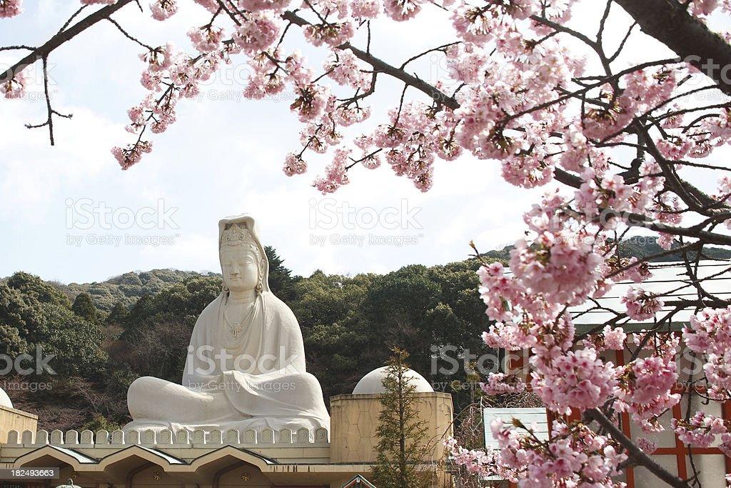goddess of mercy kyoto stock photo