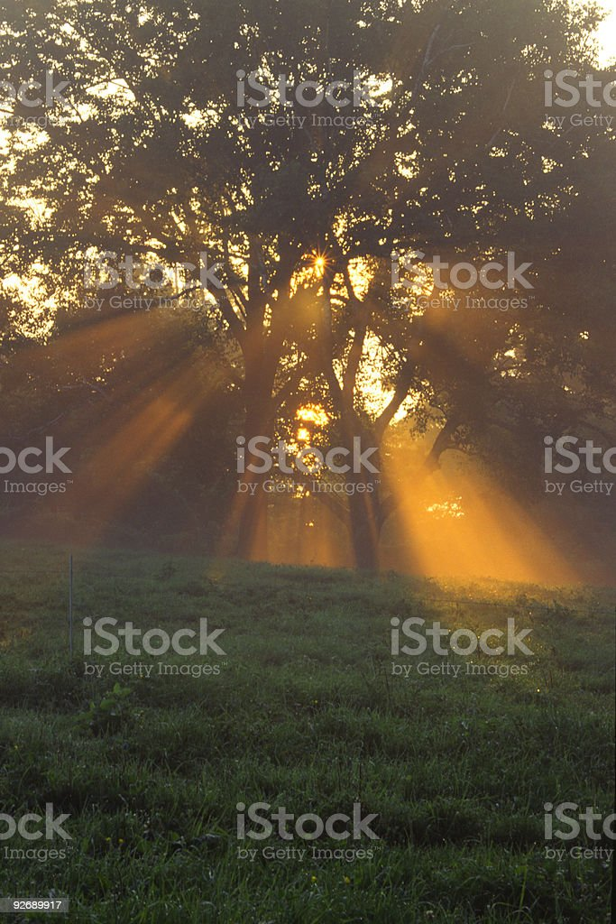 God's Light stock photo