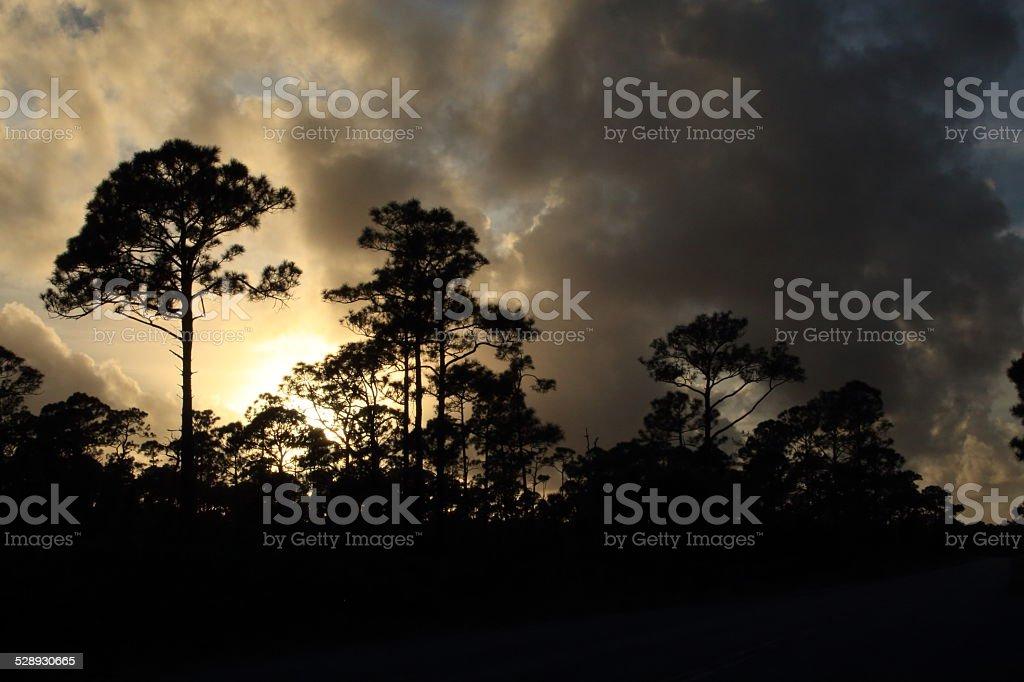 God's War royalty-free stock photo