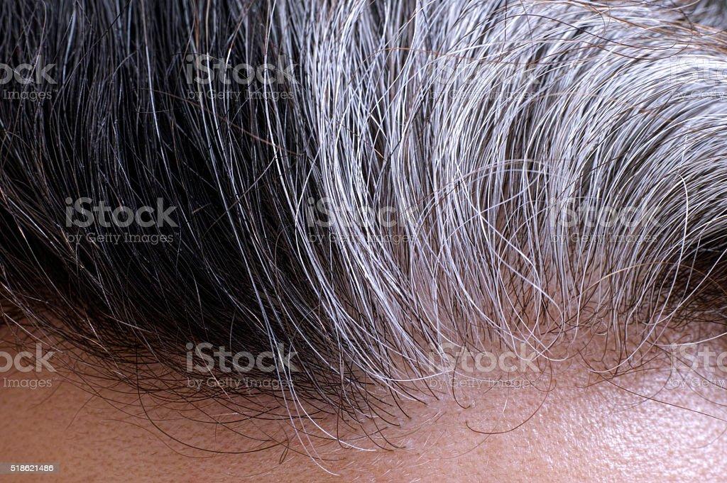 Going gray hair stock photo