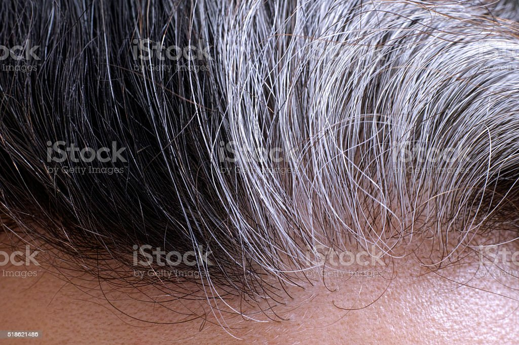 Going gray hair stock photo