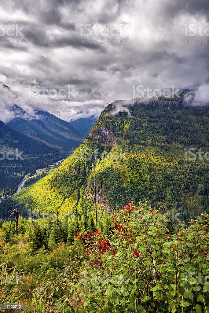 Going to the Sun Road stock photo