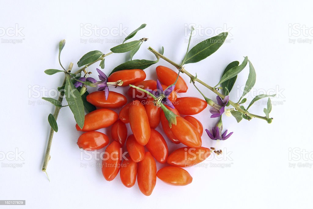 Goji berries and blossoms stock photo