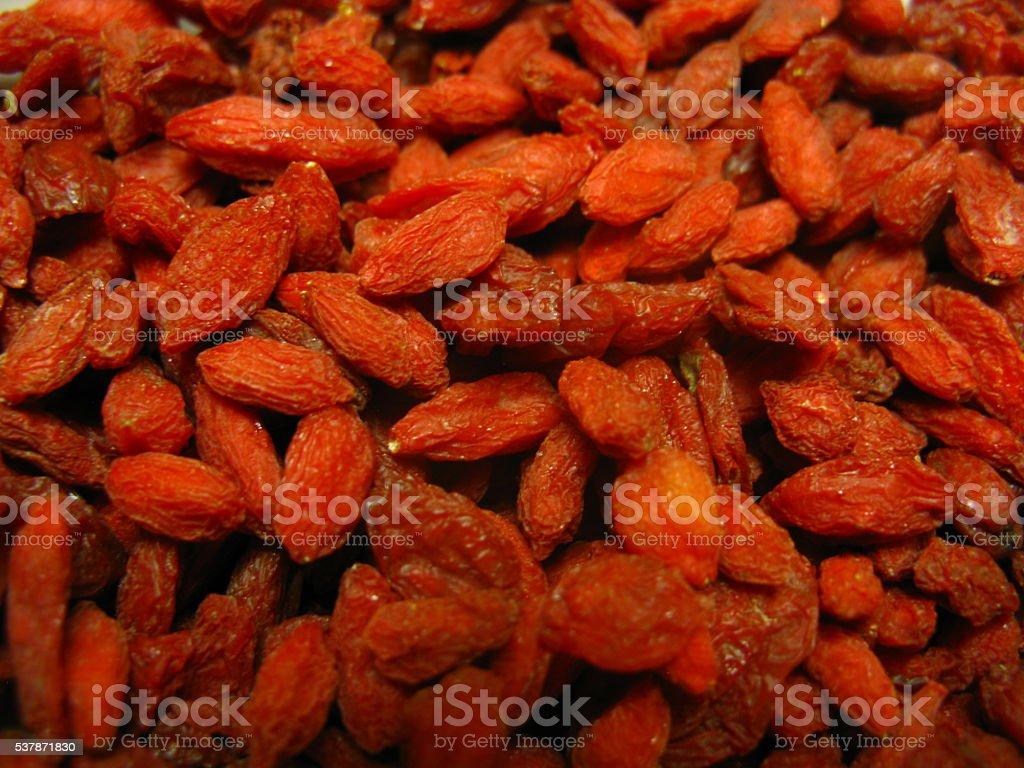 Goji berry (Lycium barbarum) stock photo