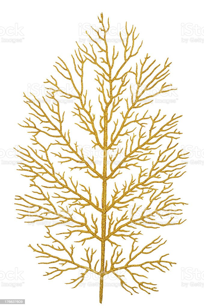 Gold branch royalty-free stock photo