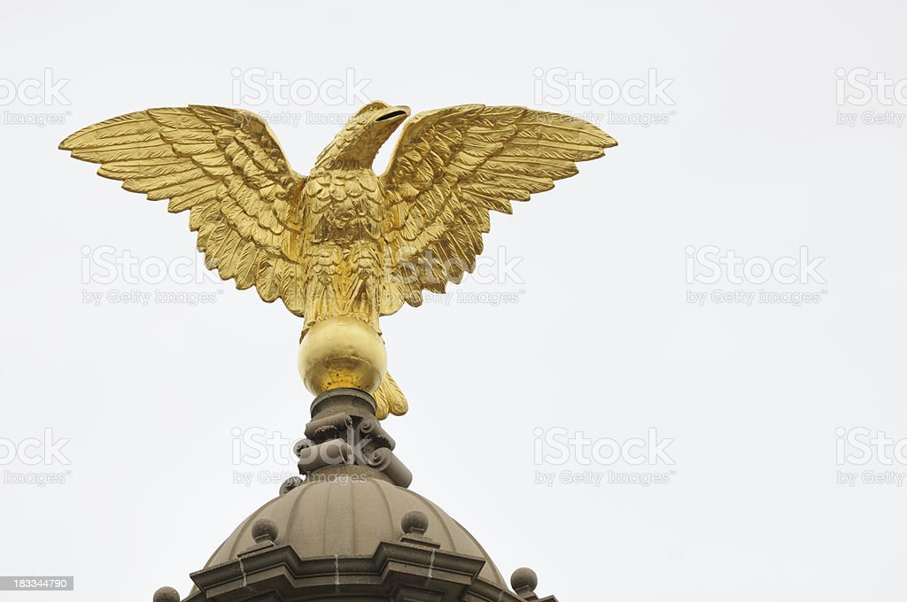 Gold capital eagle on white background stock photo