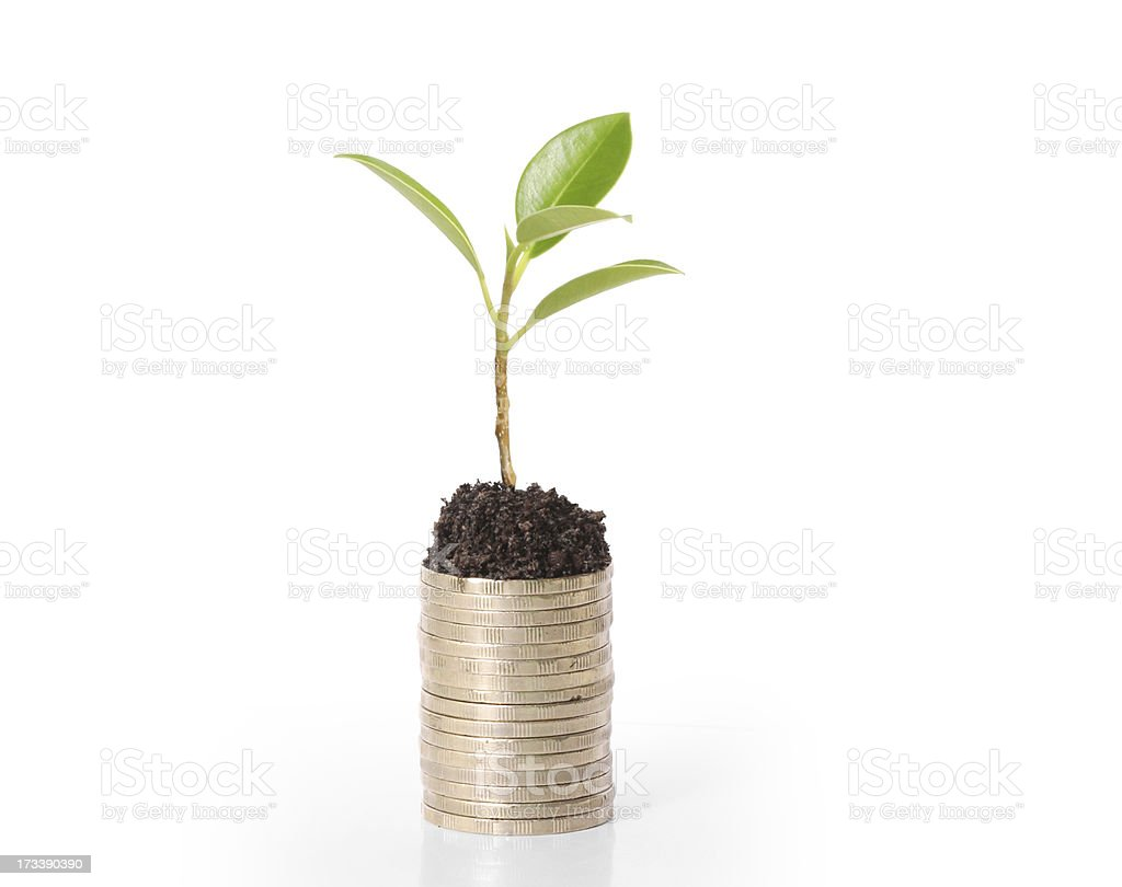 gold coins and plant them royalty-free stock photo
