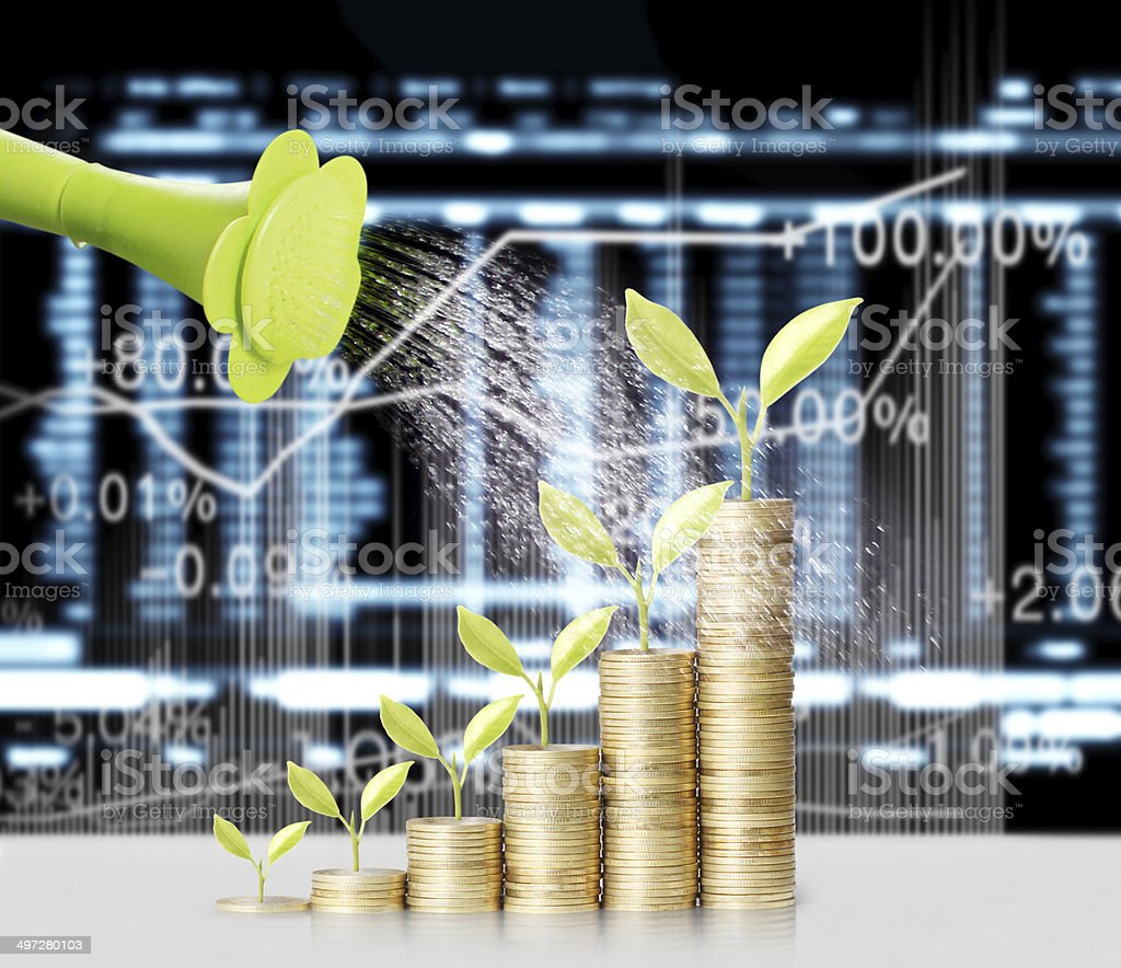 gold coins and plant them stock photo