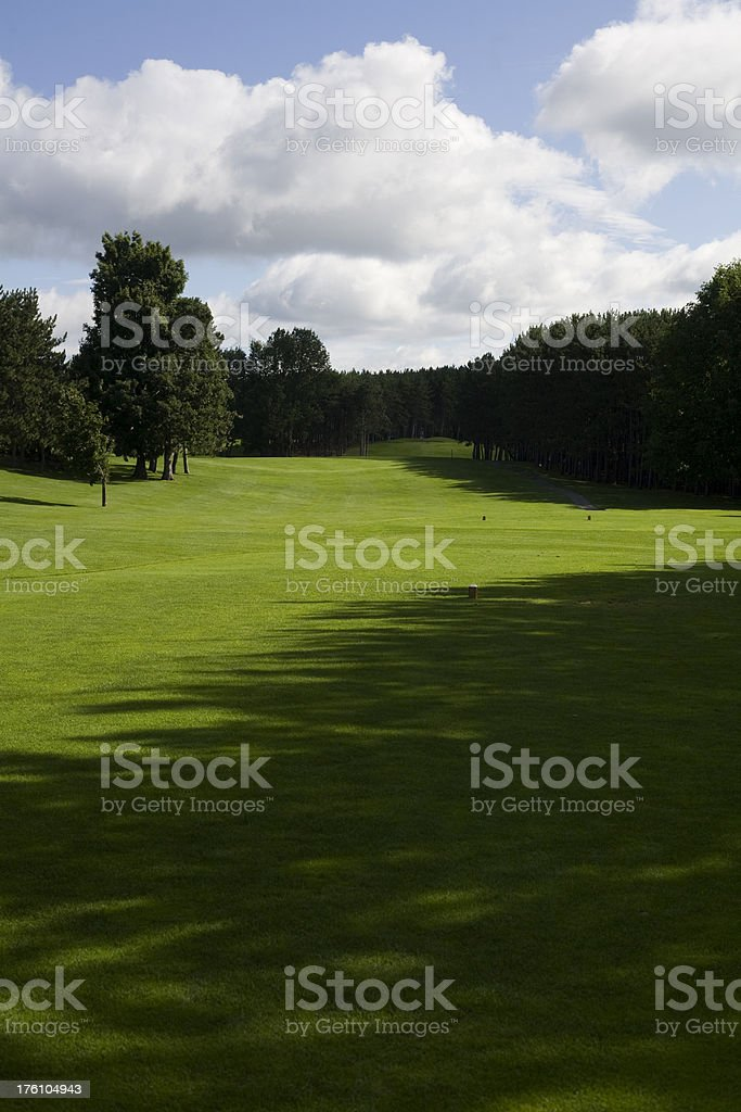 Gold course III royalty-free stock photo