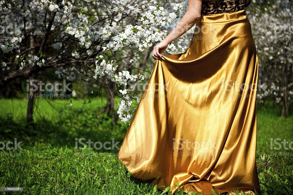 Gold dress royalty-free stock photo