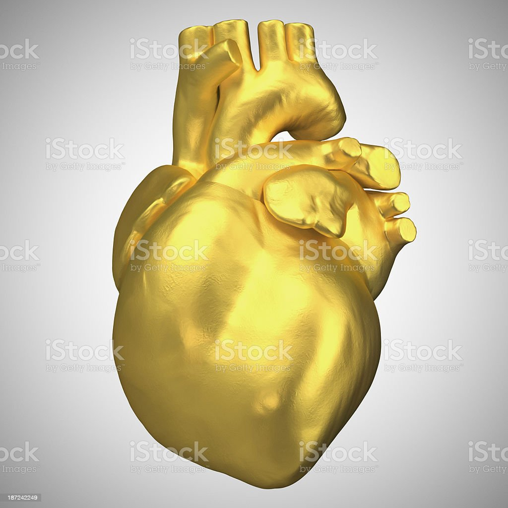 Gold Heart anatomic stock photo