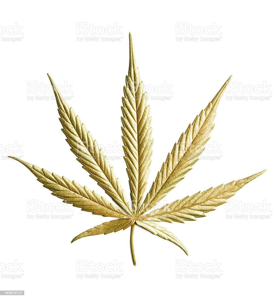 Gold Hemp (cannabis) royalty-free stock photo