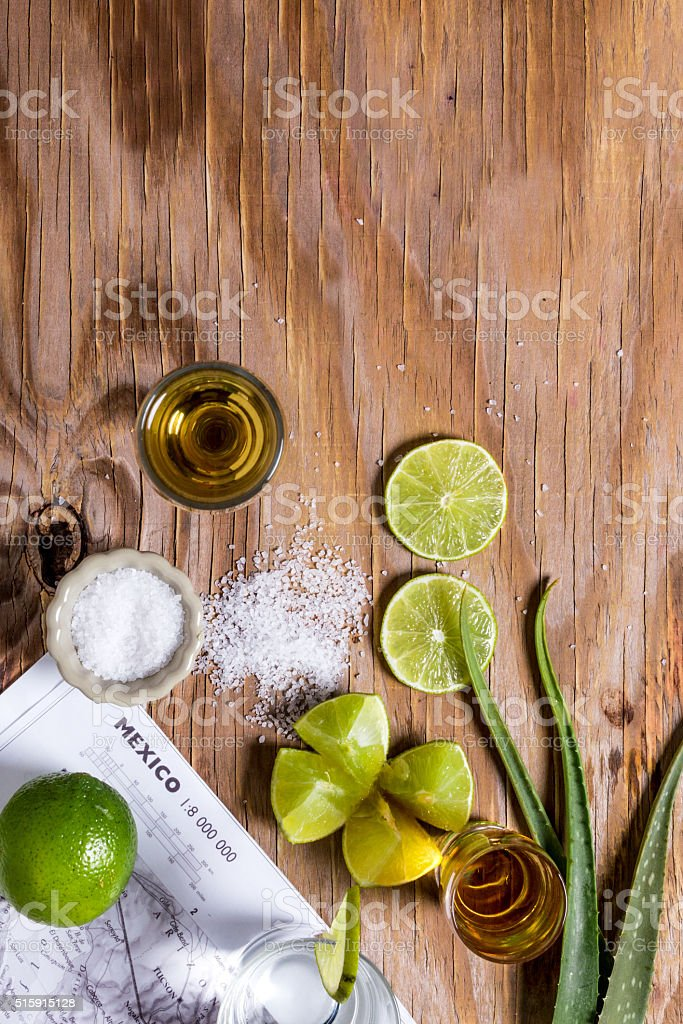 Gold Mexican tequila with lime and salt and agave leaves stock photo