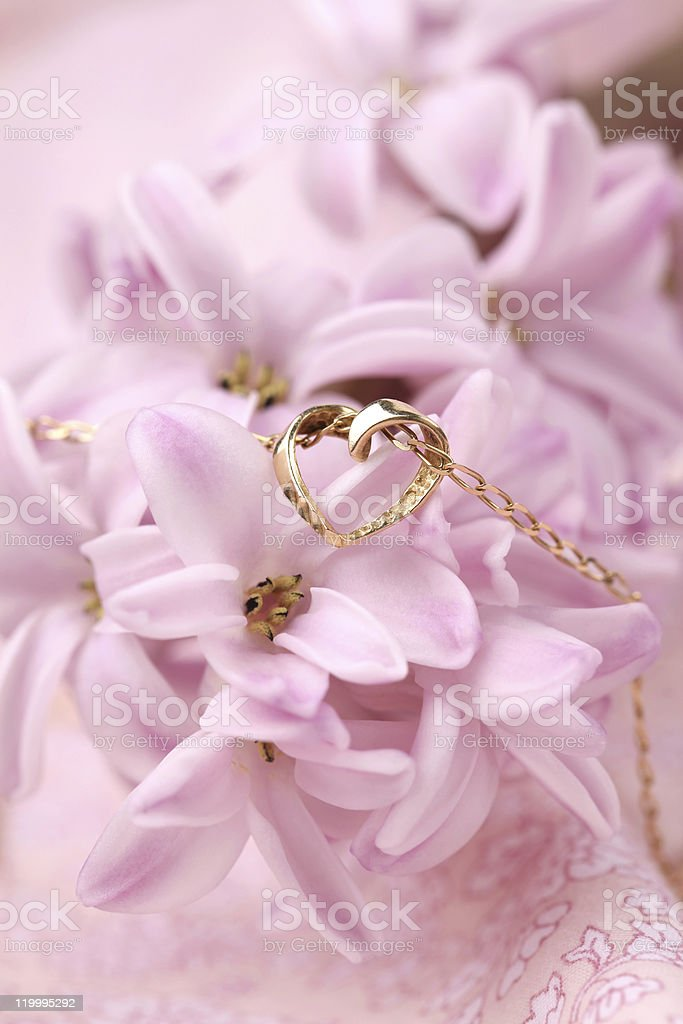 Gold necklace with heart on hyacinth royalty-free stock photo