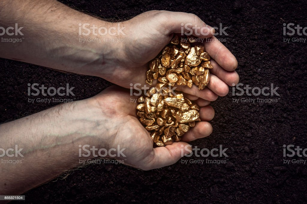 Gold nuggets the hands of the miner. The working hands of a peasant...