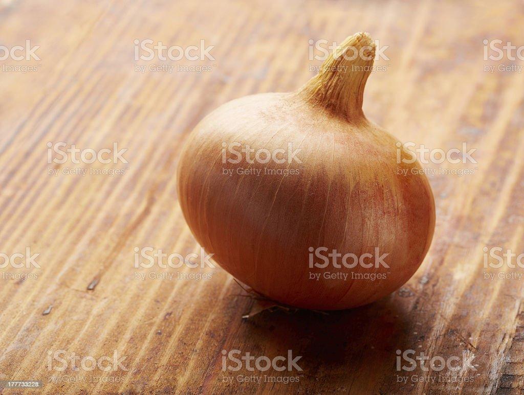 Gold onion royalty-free stock photo