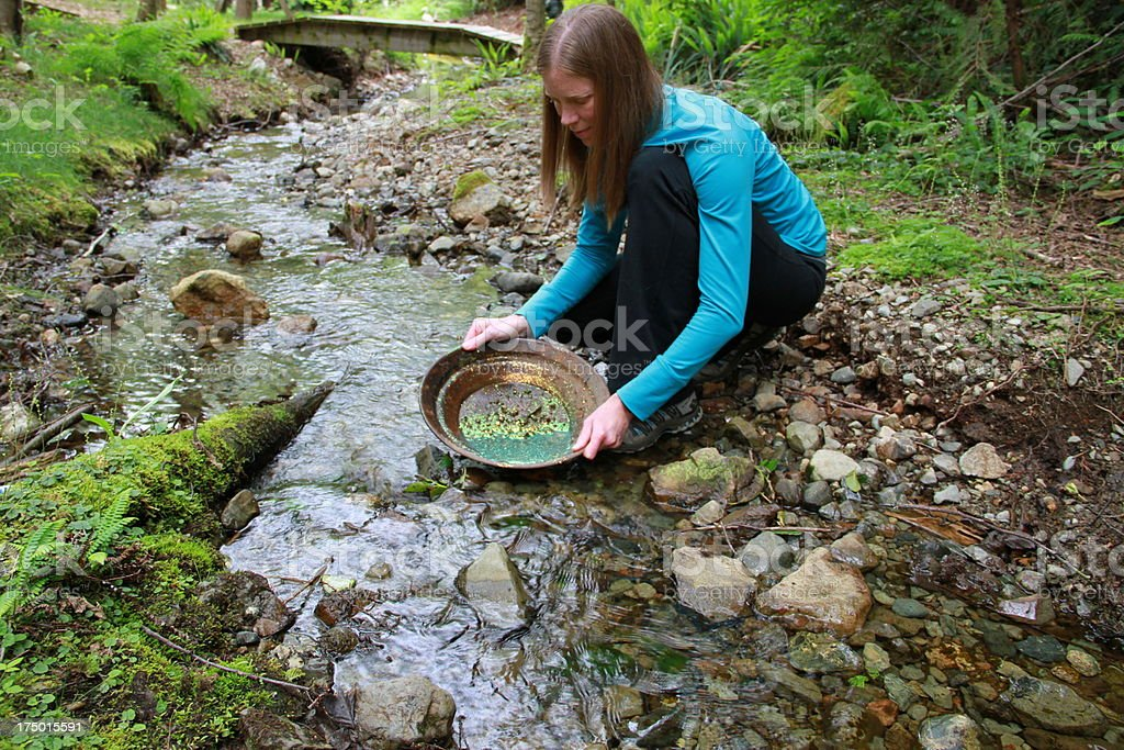 Gold Panning Lady stock photo