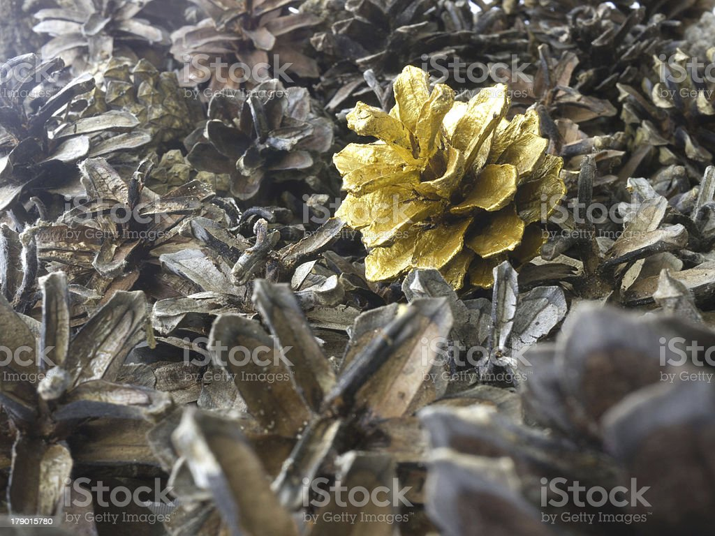 Gold pine cone royalty-free stock photo