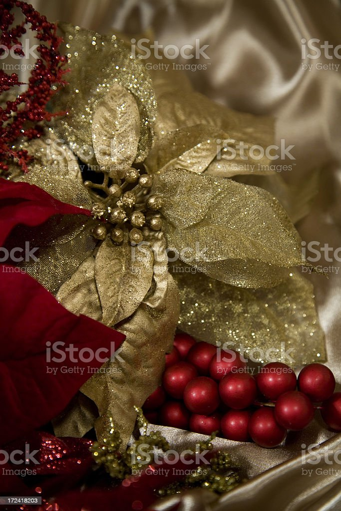 Gold Poinsettia royalty-free stock photo