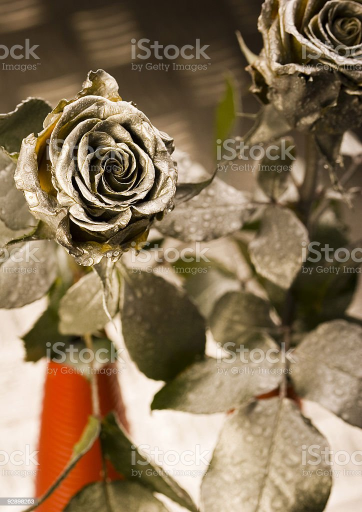 Gold roses royalty-free stock photo