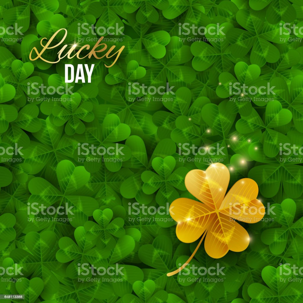 Gold shiny four leaf clover on green clover field. stock photo