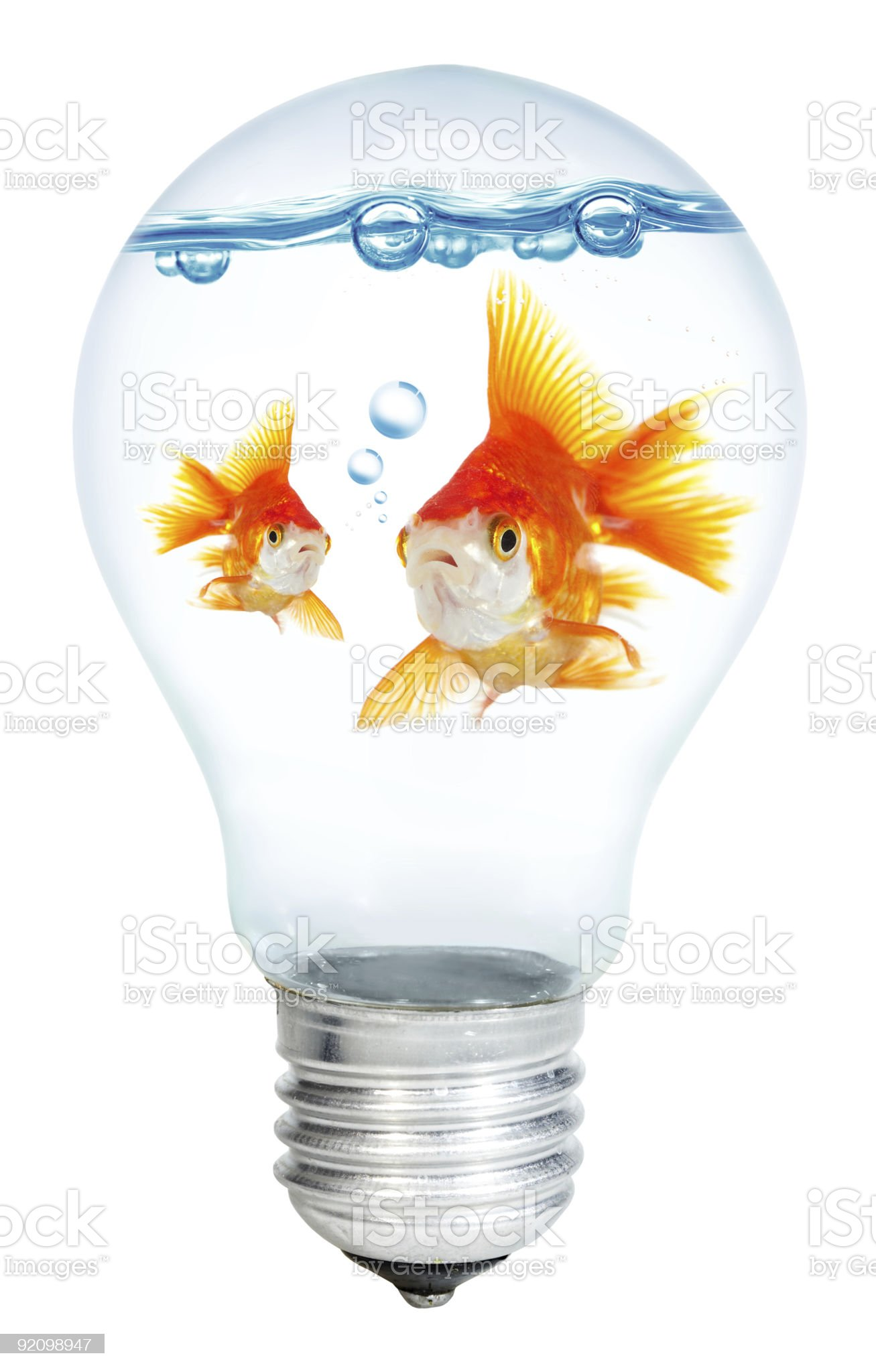 Gold small fish in light bulb royalty-free stock photo