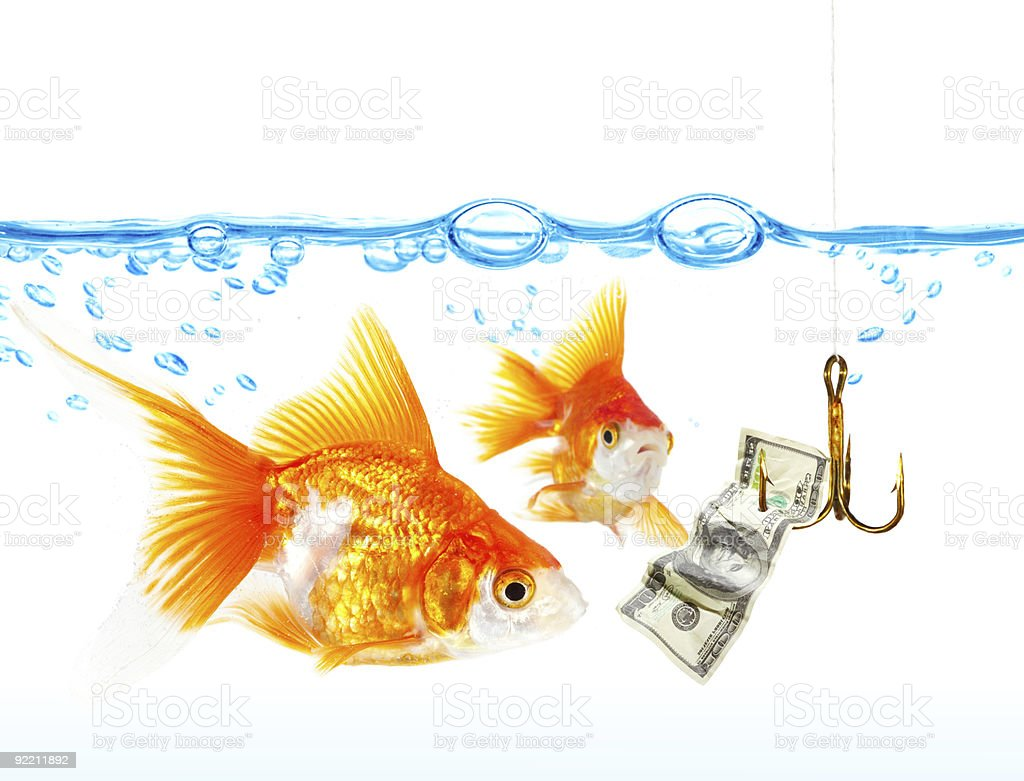 Gold small fishes under water stock photo