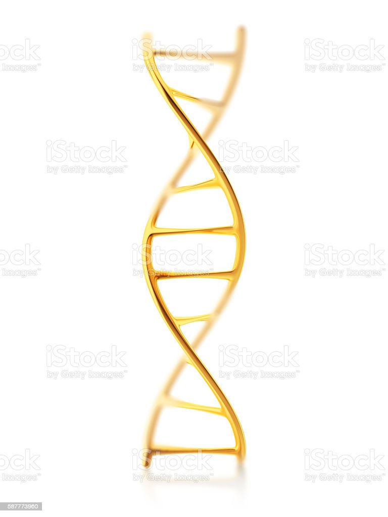 gold standard of fragment of human DNA molecule stock photo