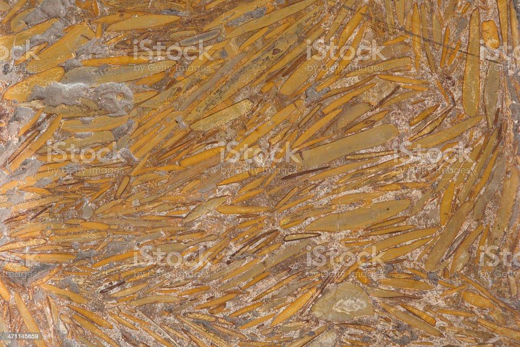 Gold Stone Background stock photo