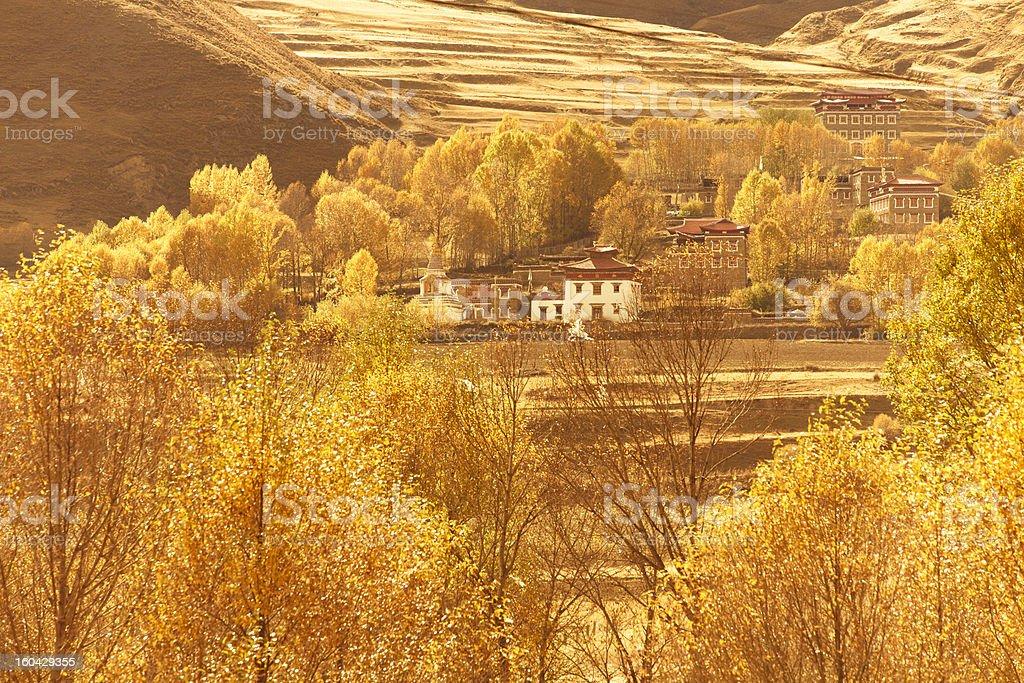 gold tibetan village royalty-free stock photo