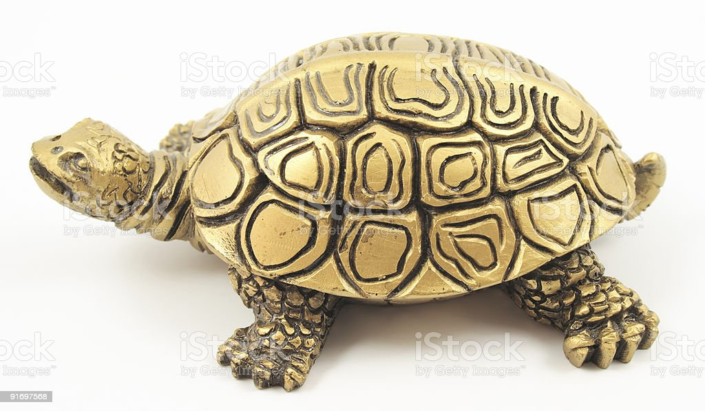 Gold turtle. stock photo