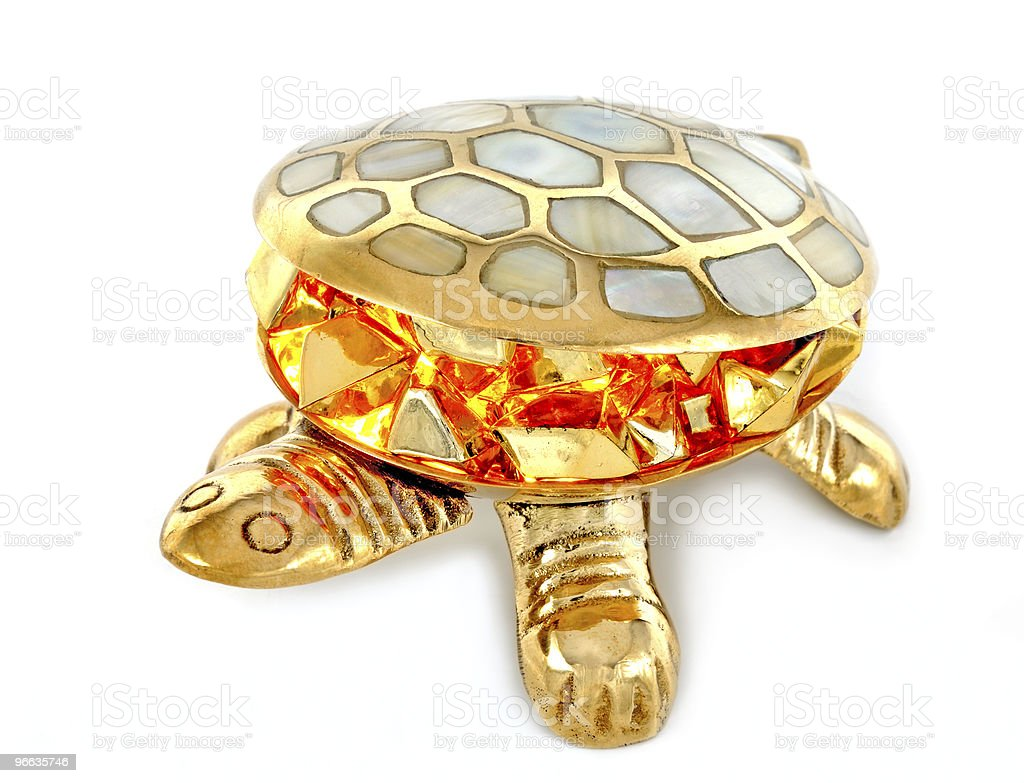 Gold turtle stock photo